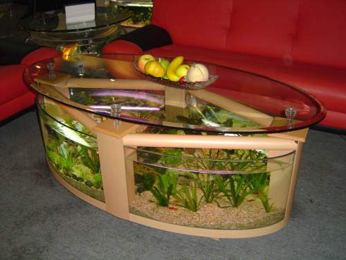 Innovative Aquarium Designs Discussions With Zharphyn