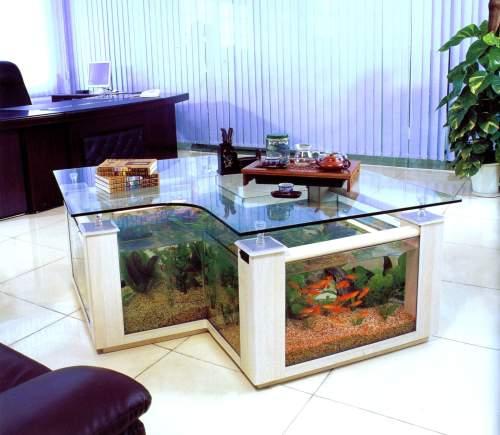 Innovative Aquarium Designs